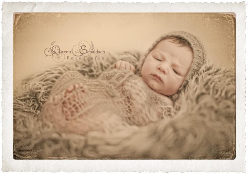 babyfotograf potsdam,babybilder potsdam
