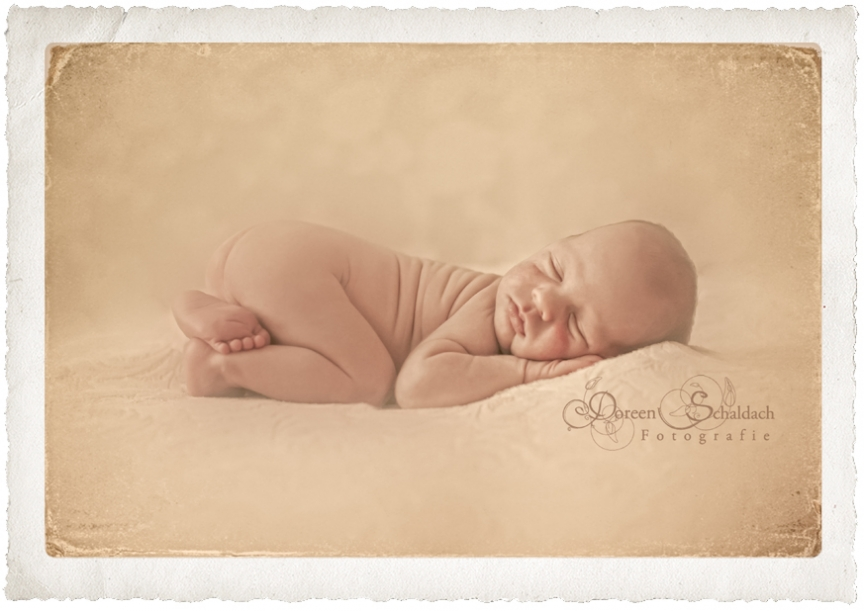 babyfotograf berlin,babyfotos berlin,babyfotograf potsdam,babyfotos potsdam