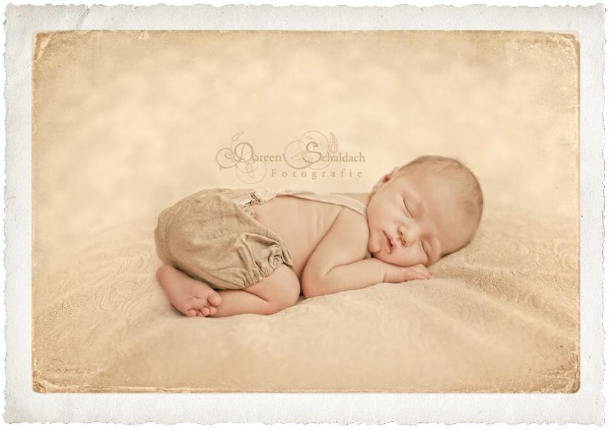 babyfotograf berlin,babyfotograf potsdam,babyfotos,babybilder