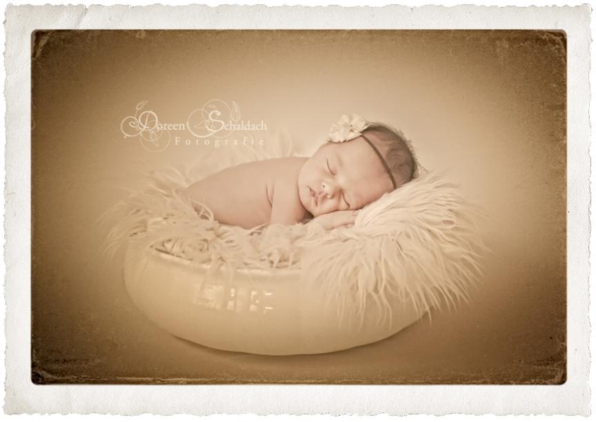 süße babyfotos,besondere babyfotos,kinderfotos,babyfotos,babyfotografie