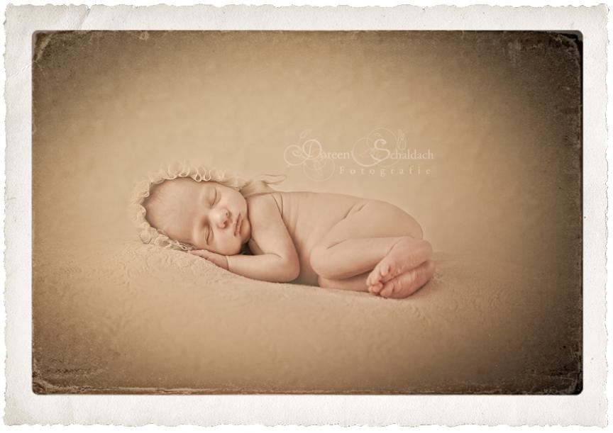 fotostudio potsdam, fotograf potsdam, fotoshooting baby, babyfotos potsdam, babyfotograf potsdam, babyfotos berlin, babyfotograf berlin,babyfotos