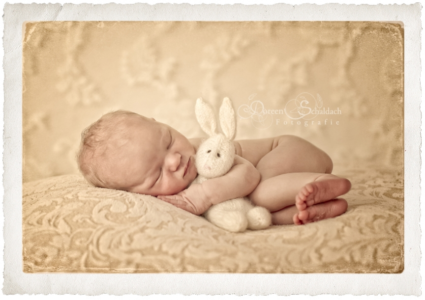 babyfotos-babyfotograf-berlin-kinderfotograf-kinderfotos-potsdam