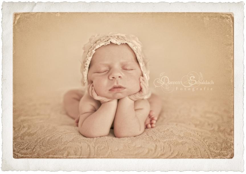 babyfotograf potsdam