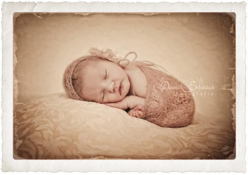 babyfotos potsdam, babyfotograf potsdam