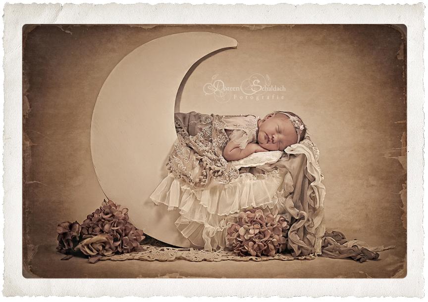 babyfotograf_berlin_potsdam_babyfotografie-friedrichshain-tiergarten-kreuzberg-falkenberg
